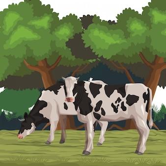 Cartone animato icona mucca
