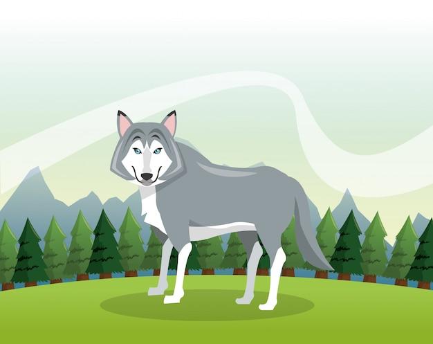 Cartone animato lupo su sfondo paesaggio