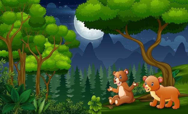Cartone animato un orso con il suo bambino godendo di notte