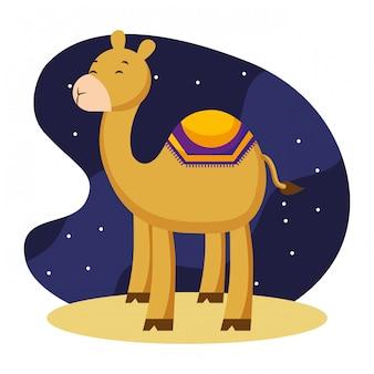 Cartoni animati di cammelli nella notte.