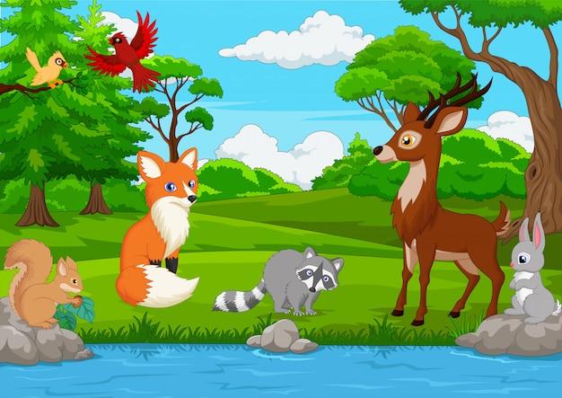 Cartoon animali selvatici nella giungla