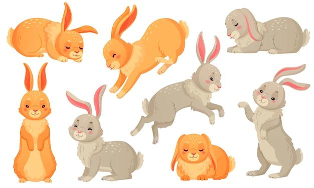 Cartoon bunny, conigli animali domestici, coniglietti pasquali e peluche piccolo coniglio primavera insieme isolato animale domestico