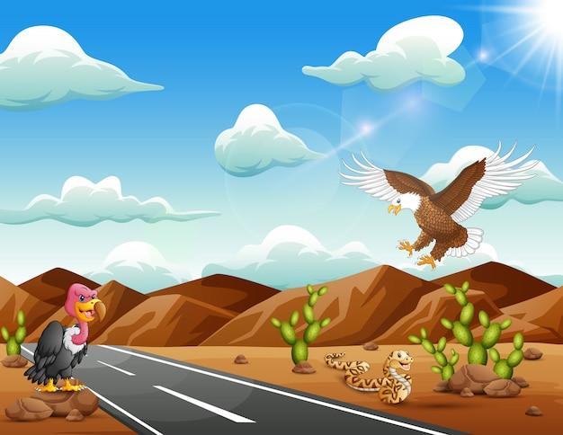 Cartoon eagle bird, avvoltoio e serpente che vivono nel deserto