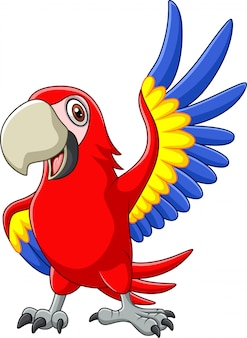 Cartoon macaw agitando