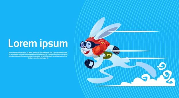 Cartoon rabbit sporty running banner