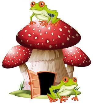 Casa dei funghi con le rane
