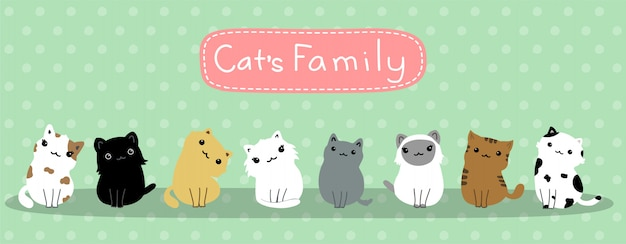 Cat's cute baby cats