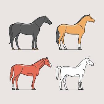Cavalli, illustrazione