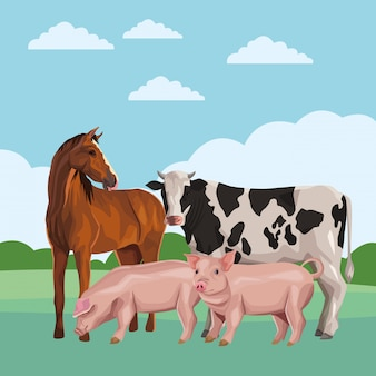 Cavallo mucca e maiale