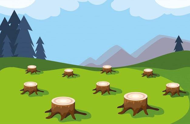 Ceppi di albero che mostrano disboscamento, disastro ambientale