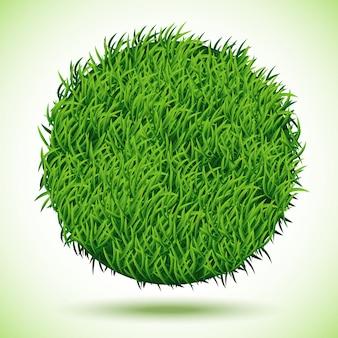 Cerchio sfondo di erba verde,