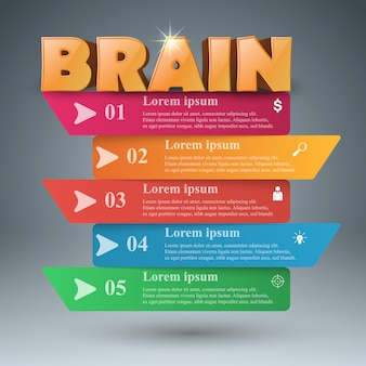 Cervello infografica