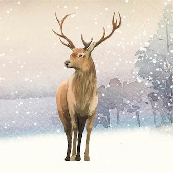 Cervo maschio dipinto dal vettore dell'acquerello