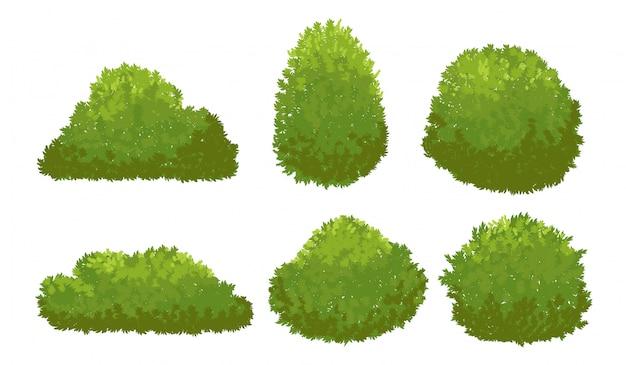 Cespugli verdi del giardino. insieme di vettore dell'arbusto e del cespuglio del fumetto isolato