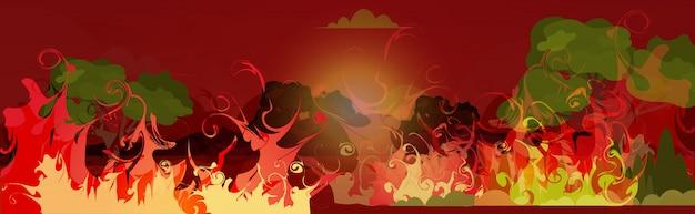 Cespuglio di incendi pericolosi sviluppo del fuoco boschi asciutti che bruciano alberi riscaldamento globale disastro naturale ecologia problema concetto intenso arancione fiamme orizzontali