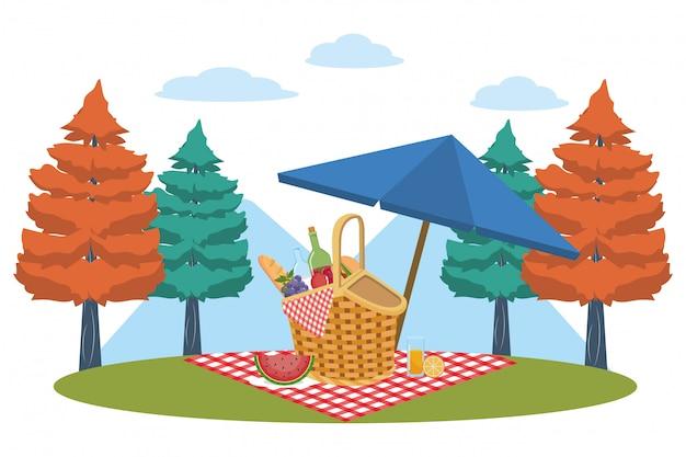 Cestino da picnic nella foresta