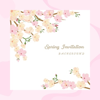 Cherry blossom invitation background per il festival di primavera