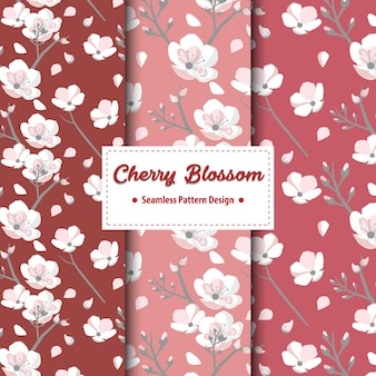 Cherry blossom seamless pattern design in rosso