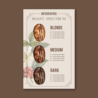Chicchi di caffè arabica arrosto bruciano il tipo di caffè, illustrazione dell'acquerello infographic