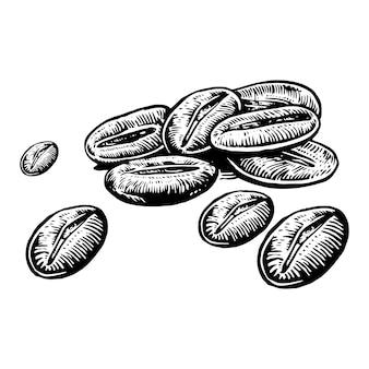 Chicchi di caffè disegnati a mano