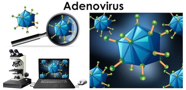 Chiuda sull'oggetto isolato del virus chiamato adenovirus