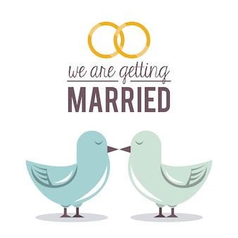 Ci sposiamo con una coppia di piccioni
