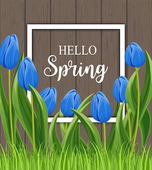 Ciao carta di primavera con tulipano in fiore con cornice bianca