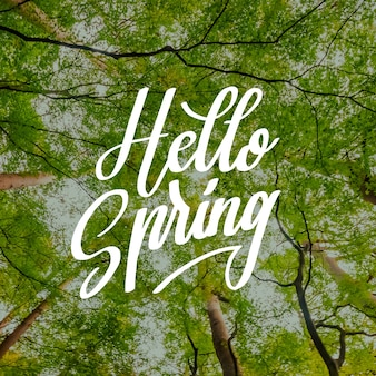Ciao primavera lettering con alberi foto