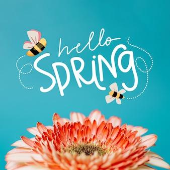 Ciao primavera lettering stile con foto