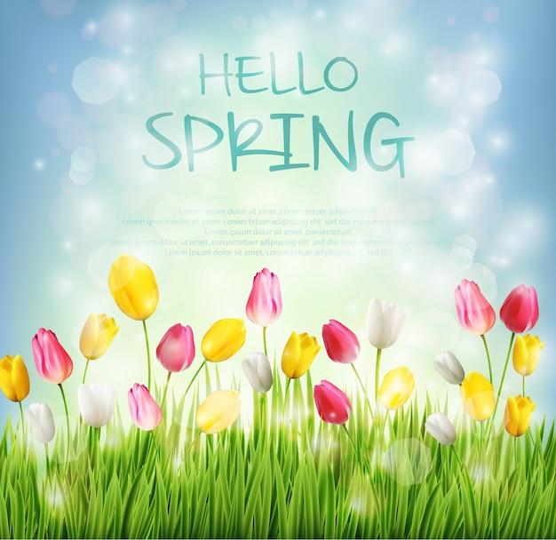 Ciao sfondo primavera con fiore tulipano su bokeh offuscata
