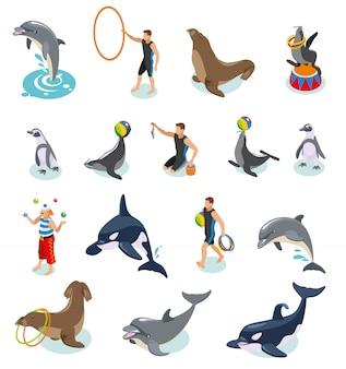 Circo di mare set isometrico di foche trichechi trichechi delfino balena addestratori di animali e giocoliere clown