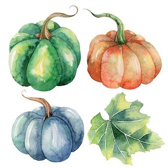 Clipart di autunno dell'acquerello dipinto a mano con zucche
