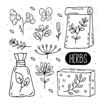 Clipart di doodle di erbe confezionate. erbe aromatiche. ingredienti biologici, cura naturale. ecologico, vegano. adesivo, icona.
