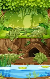 Coccodrillo nella palude