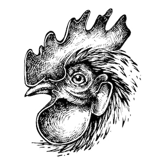 Cock ink drawing