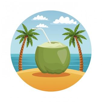Cocktail di cocco in spiaggia nel simbolo rotondo