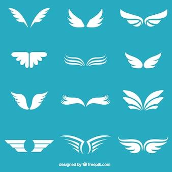 Collezione ali bianche