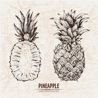 Collezione ananas disegnata a mano