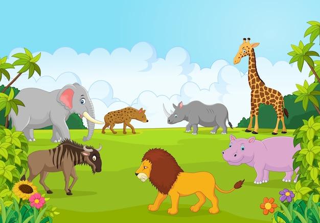 Collezione animale africa nella giungla