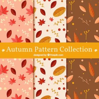 Collezione autunno modello