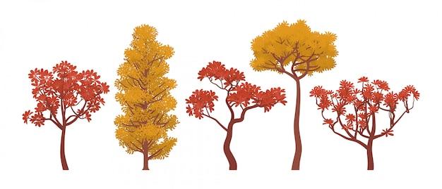 Collezione di alberi autunnali