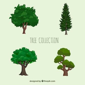 Collezione di alberi in stile realistico