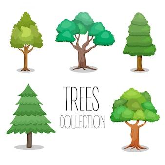 Collezione di alberi