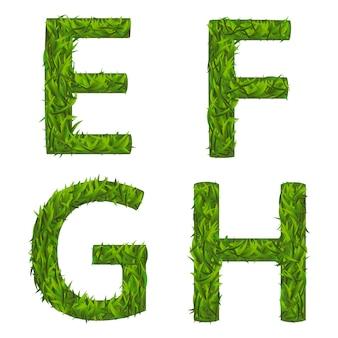 Collezione di alfabeto di erba