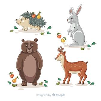 Collezione di animali autunnali disegnati a mano