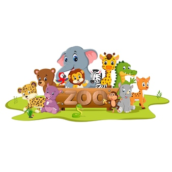 Collezione di animali da zoo