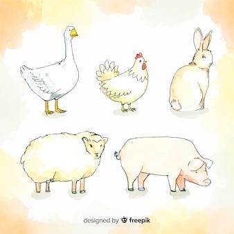 Collezione di animali della fattoria dell'acquerello