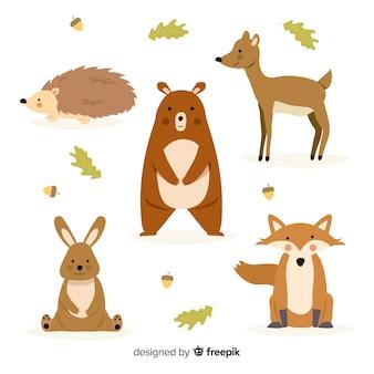 Collezione di animali della foresta autunno disegnato a mano