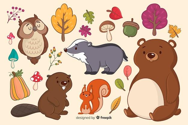 Collezione di animali della foresta disegnati a mano