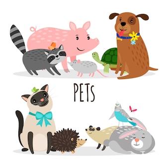 Collezione di animali domestici dei cartoni animati